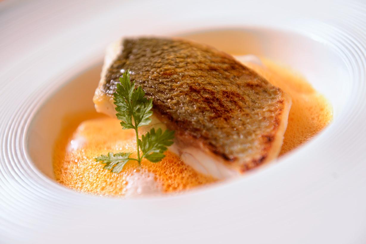 Fisch Ostseehotel Waldschlösschen Prerow