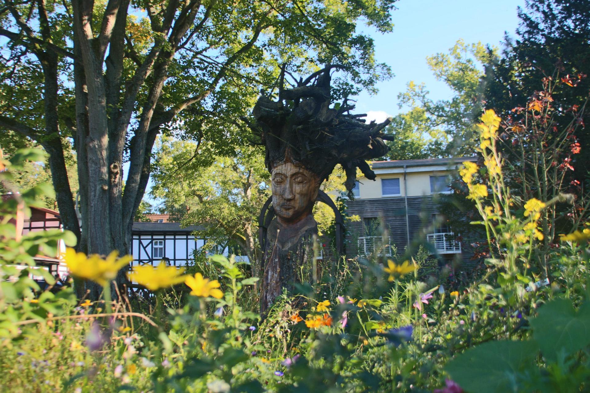 Garten Pflanzen Hotel Ostsee